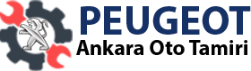 Ankara peugeot servisi Logo